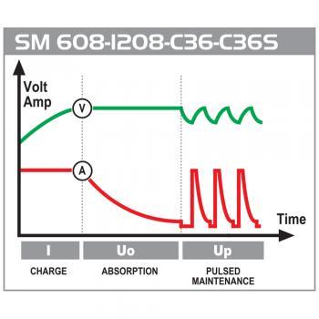 Зарядное устройство инверторного типаDecaSM C36 - slide3